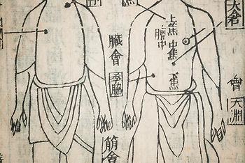 acupuncture, Praxis für Akupunktur und Chinesische Medizin -  Isabella Rösinger Wiesbaden Heilpraktiker
