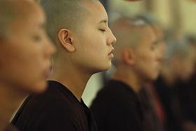 Qigong Meditation Stille, Ernährungslehre, Schröpfen, Tuina Massage, Gua Sha Schabetechnik,  Akupunktur acupunture, Wiesbaden Heilpraktiker