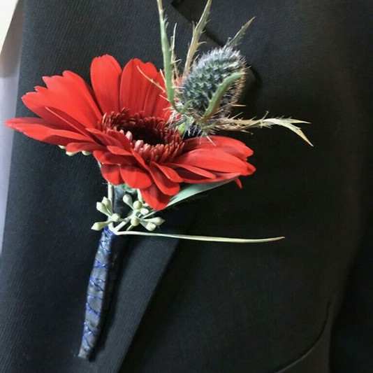 Red Gerbera & Blue Thistle Bout