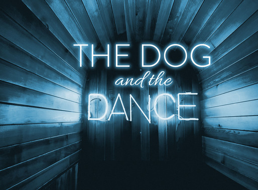 The Dog & The Dance