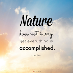 Environmental Quote of the Day