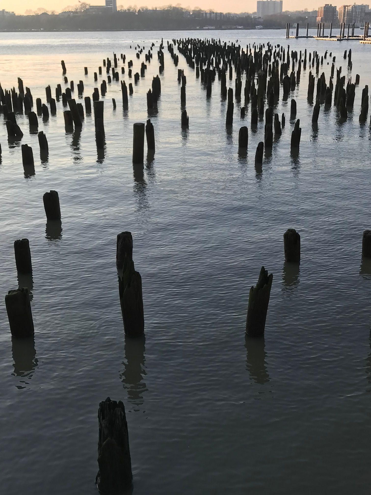 Hudson River old pyling.jpg