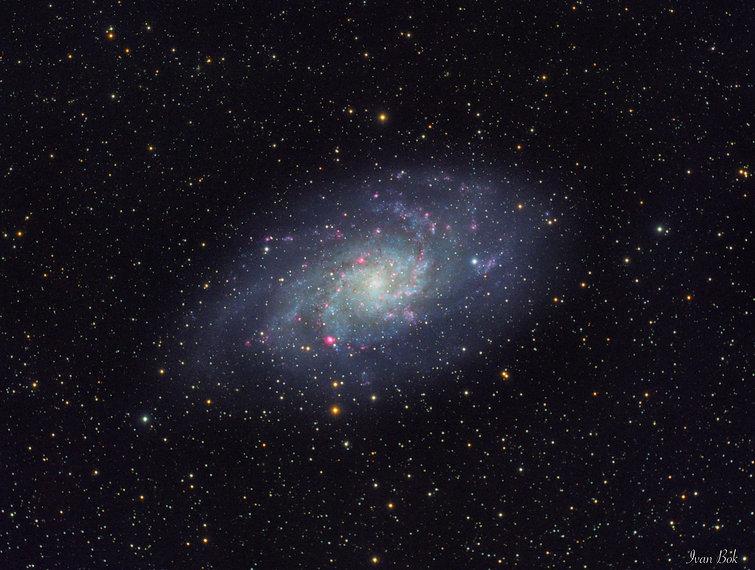 triangulum galaxy singapore astronomy astrophotography stars