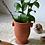 Thumbnail: Eleanor Nude Vase