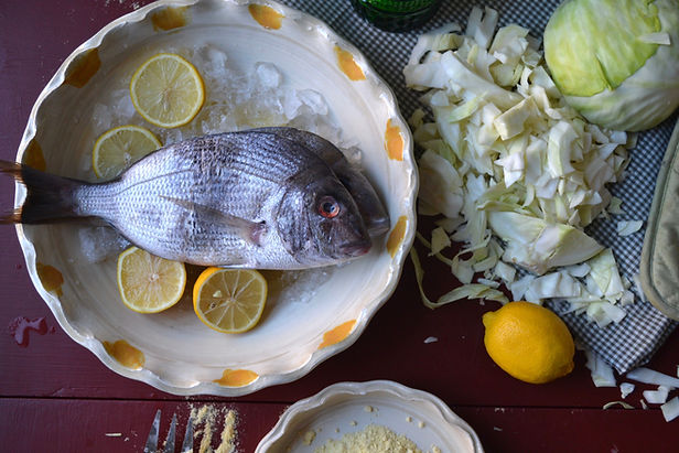 fish_8.jpeg