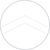Lux Life Logo light Gray circle only.png