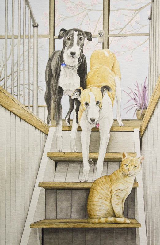 Wheelhouse Dogs