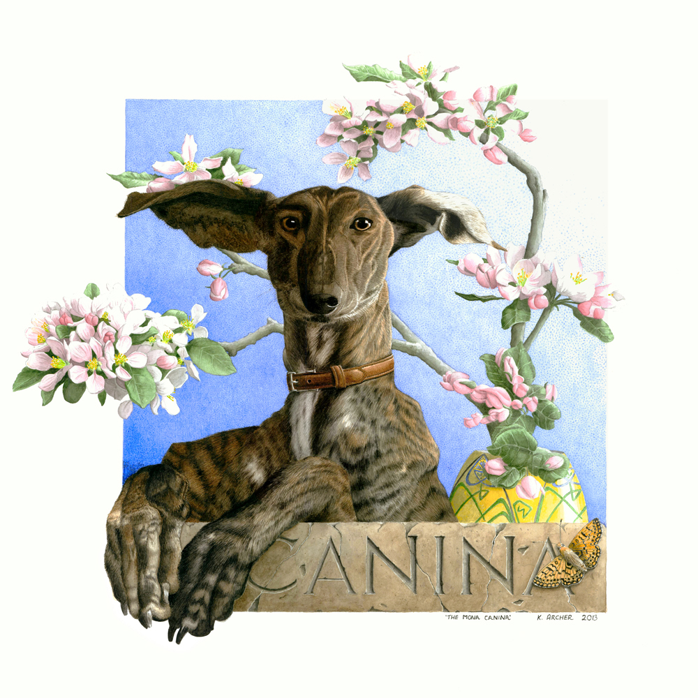 The Mona Canina