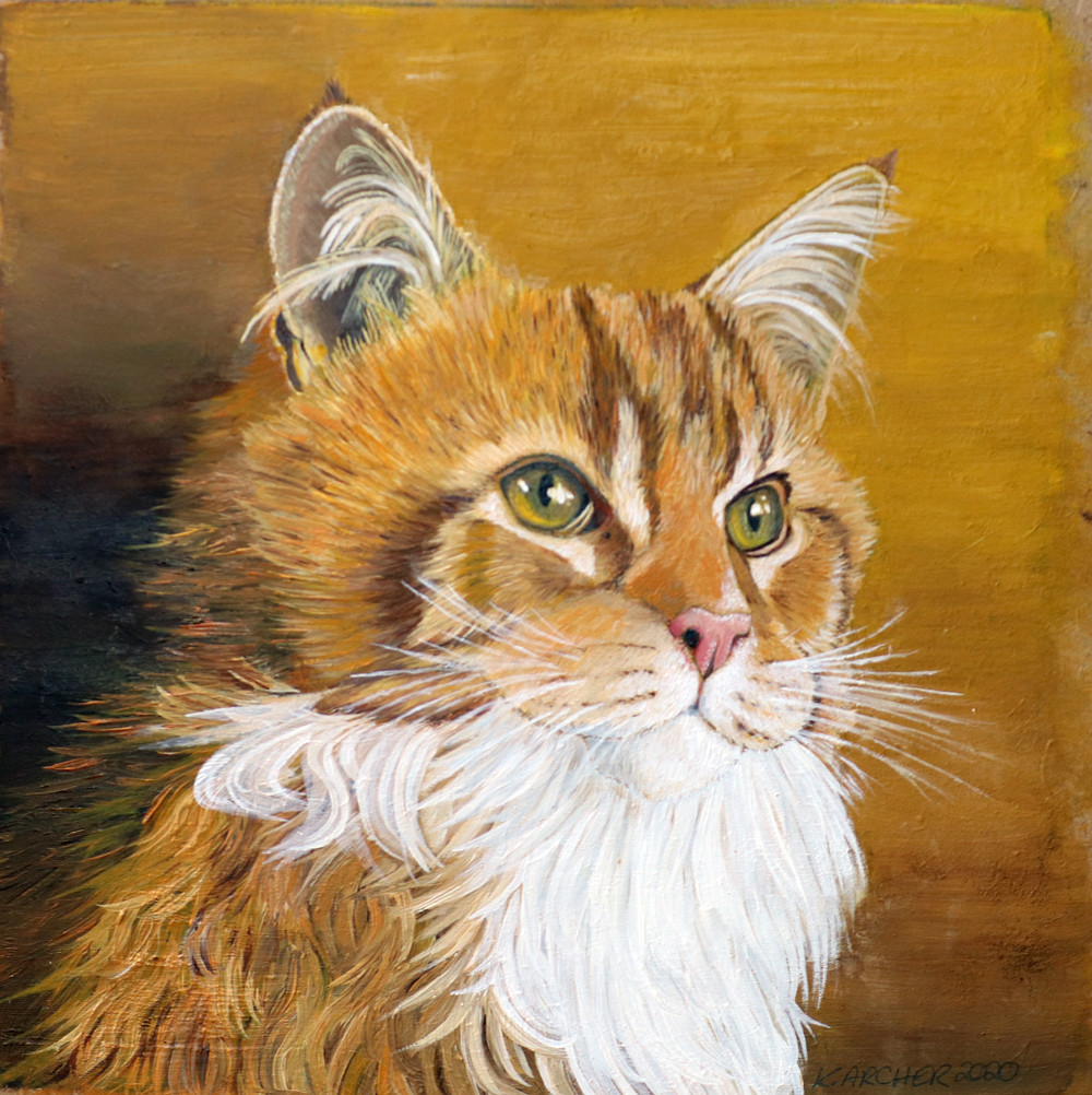 Oil painting of a Maine coon kitten