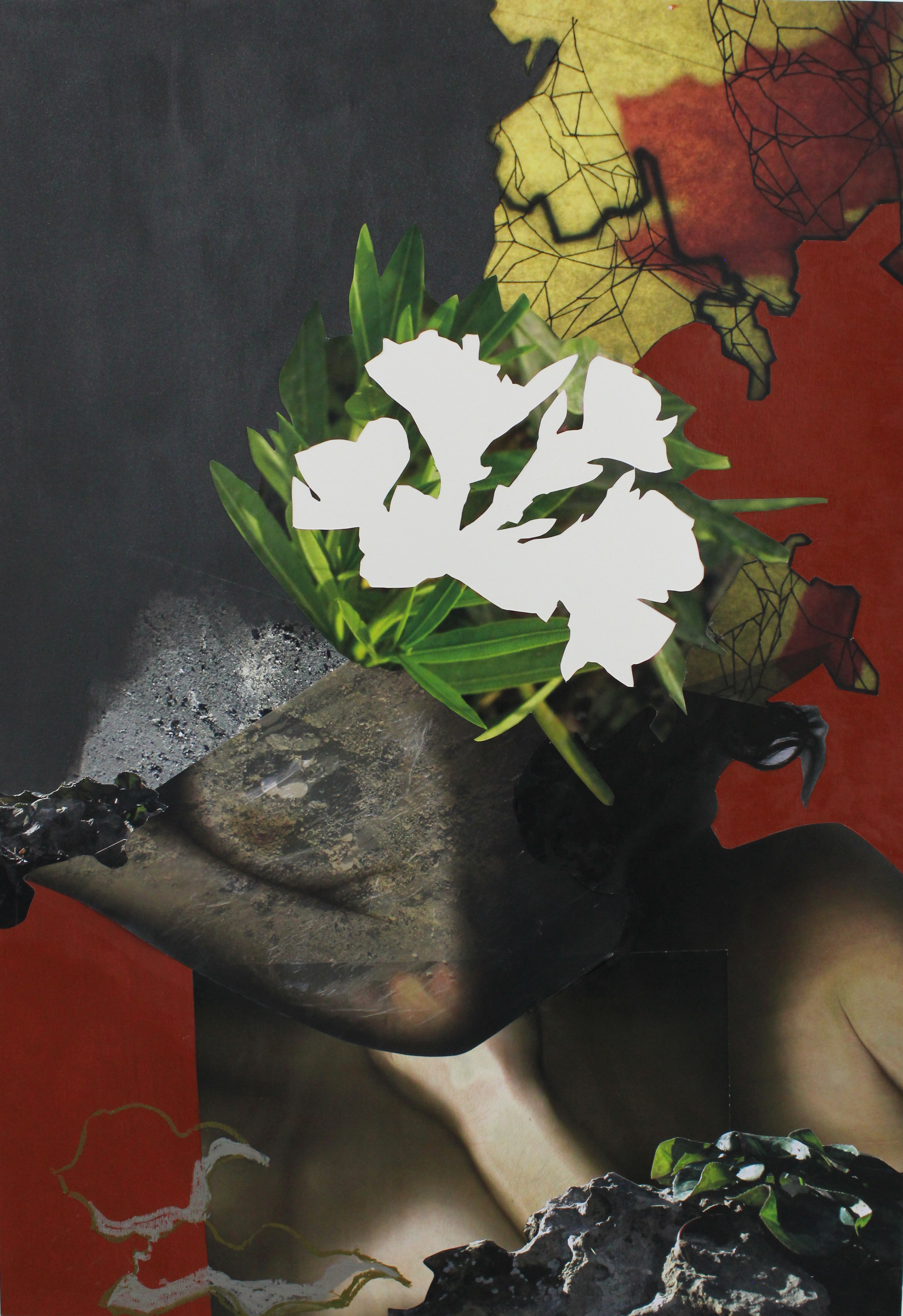 Exhibition-collage-untitled2015