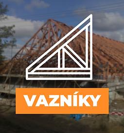 VAZNIKY.png