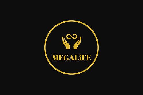 The MEGALiFE Matrix Spiral 8x10