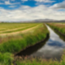 Farm and Irrigation Ditch