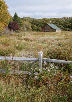 Subtle Autumn ↟ Harpswell, ME