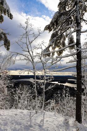 Pismere Mountain ↟ Raymond, ME