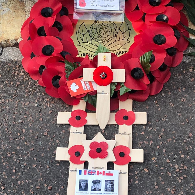 9 Poppy crosses and a Star of David - co
