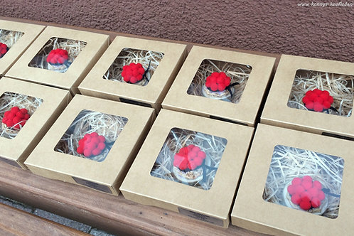 10 GIVE AWAY Boxen mit Schwarzwälder BOLLENHUT Magnet