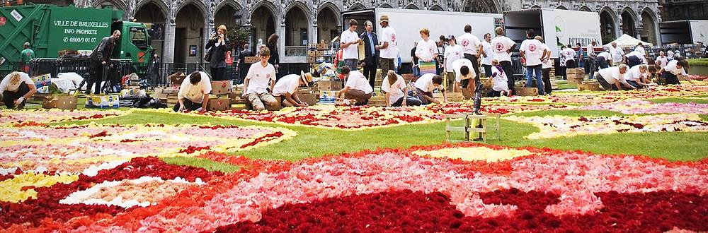Tapete Flores Grand Place Bruxelas - Destino France