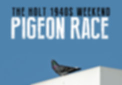 Pigeon Race Thumbnail.jpg
