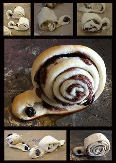 snail spirals.jpg