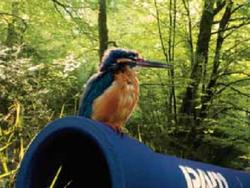 PAM Saint Gobain: Les bons tuyaux, du cycle de l'eau