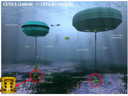 HUTCHINSON : Les technologies marines au service des énergies renouvelables