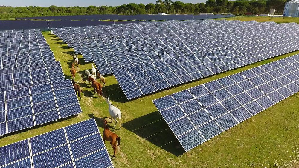 Parc solaire de Coruche, Portugal d'une puissance de 9.69 MW