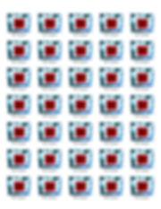 RED Hologram Sheet.jpg