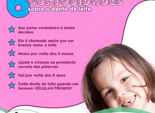 6 Curiosidades sobre o dente 🦷 de leite
