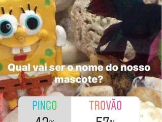 O nome vencedor foi TROVÃO! #ciopsaude#trovão....