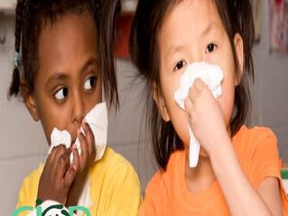 Mitos da Gripe