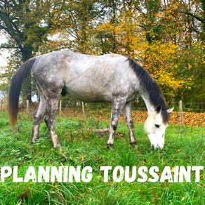 Plannings vacances de la Toussaint