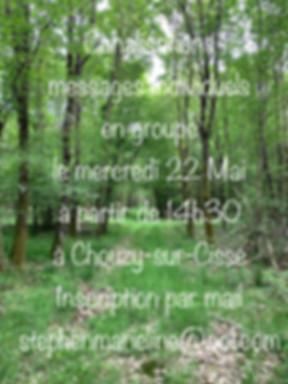 IMG_0029 (1).jpg