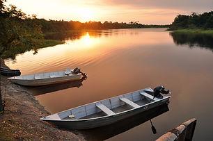 Das bolivianische Pantanal