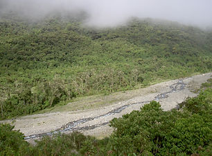 Der Carrasco Nationalpark in Bolivien