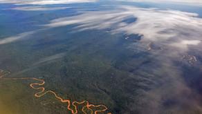 Der Madidi Nationalpark - Artenreichtum und Ökotourismus
