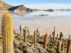 Salar de Uyuni - Besuch des Nordufers des größten Salzsees der Welt