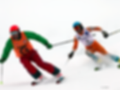 ALPIN-COMPETITION_HANDI-1.png