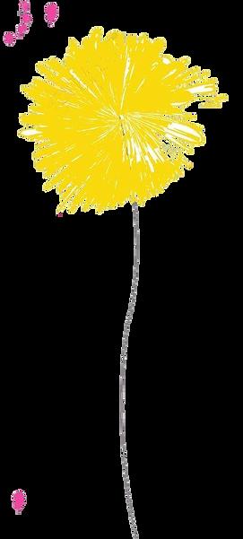dessin-fleurs-colorées-sur-fond-blanc JA