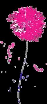 dessin-fleurs-color%C3%A9es-sur-fond-bla