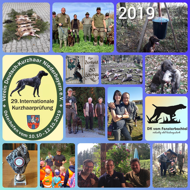 Jagdjahr_2019