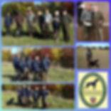 IKP_Collage.jpg