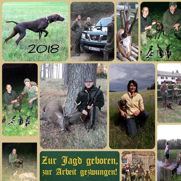 Jagdjahr_2018