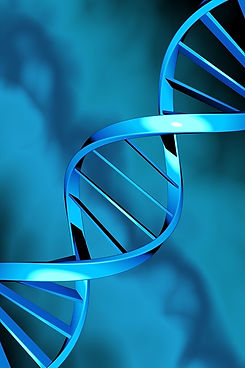 DNA double helix on a blue background_edited.jpg
