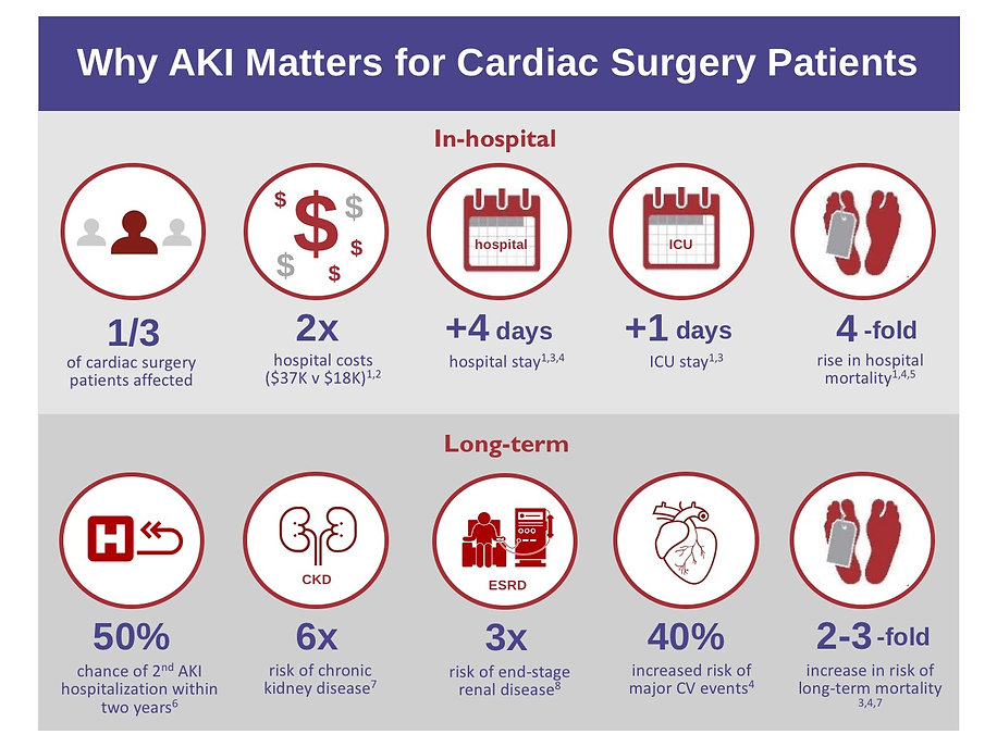 Why AKI Matters Graphic 3-9-19.jpg