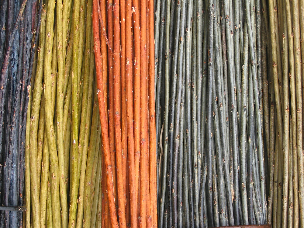 willows various colours.jpg
