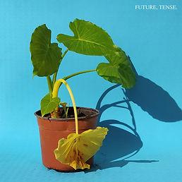 ADIR L.C - FUTURE TENSE COVER 1.jpg