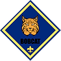 bobcat digital.png