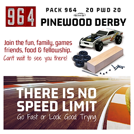 PACK 964 20 PWD 20.png