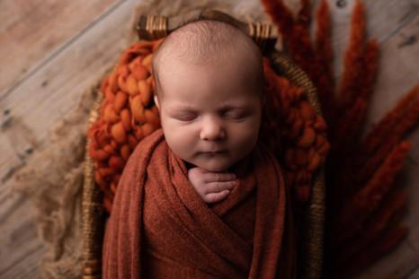 wausau, wi newborn